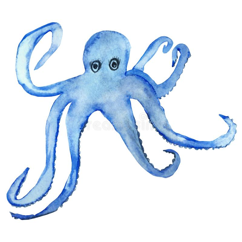 Watercolor hand painted, blue octopus with tentacles isolated on white background. royalty free illustration