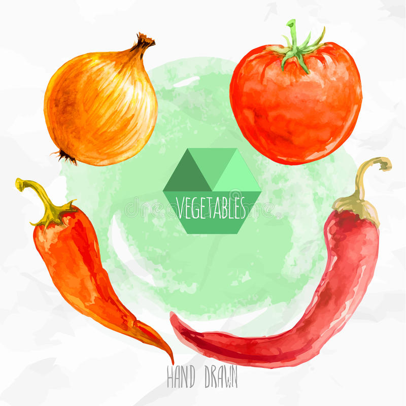 Watercolor hand painted chili peppers, onion and tomato. stock illustration