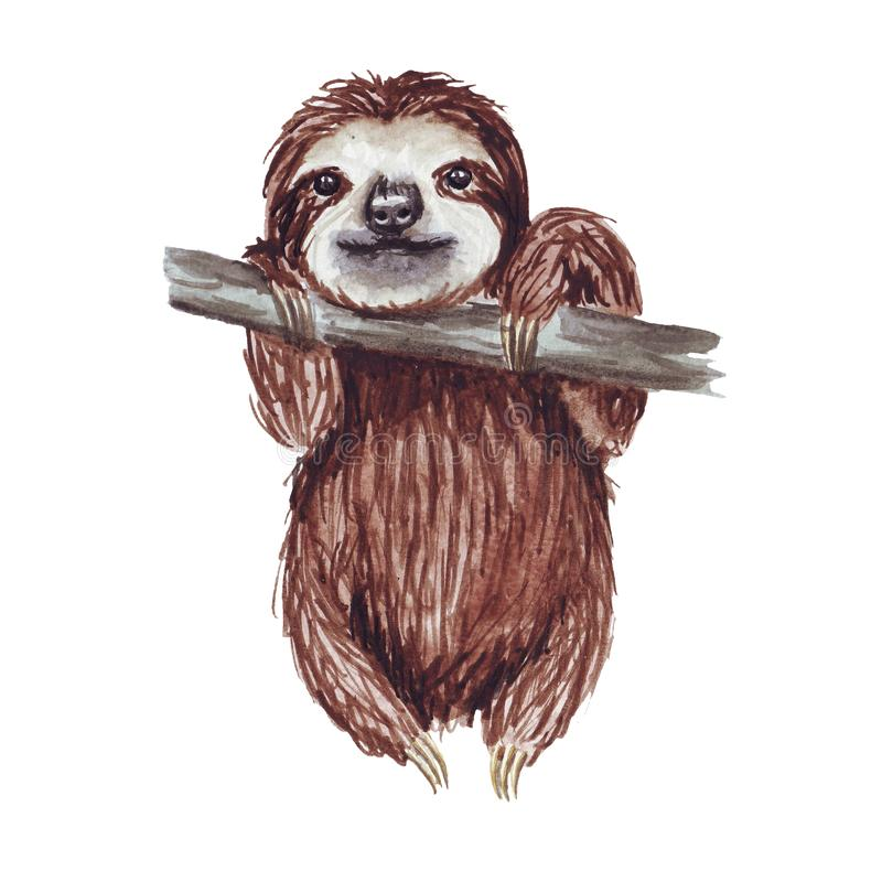 Watercolor hand painted cute sloth hanging on the tree. Cartoon little baby animal illustration in lazy style. Isolated simple character for greeting card royalty free illustration