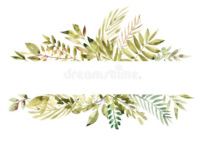 Watercolor hand painted green floral banner isolated on white background. Healing Herbs for cards, wedding invitation vector illustration