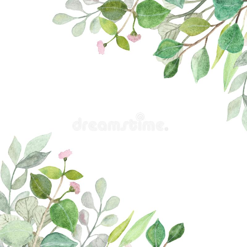 Watercolor hand painted lush pattern with silver leaves and branches of eucalyptus dollar. Herbs for wedding invitations, save the date or design welcome royalty free illustration