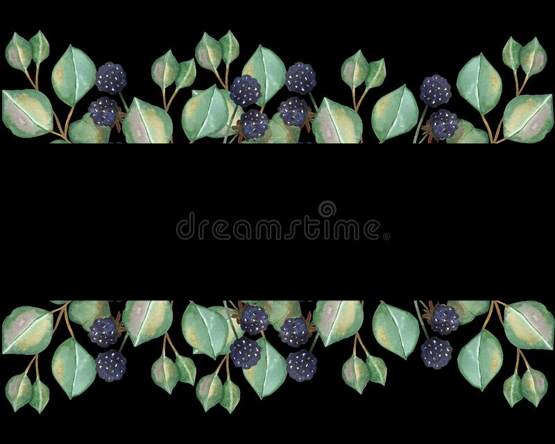 Watercolor hand painted nature berry greenery banner composition with purple blackberry and green leaves on branch. On the black background for invite and vector illustration