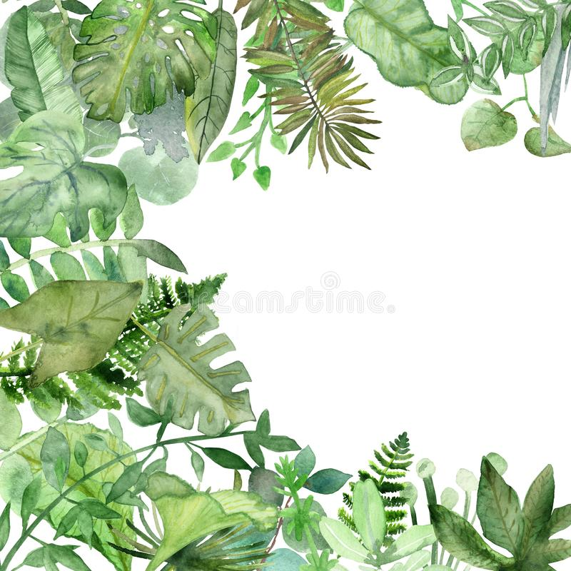 Watercolor hand painted nature corner frame with different green tropical leaves and plants, jungle plants collection. Bouquet for invitations and greeting royalty free illustration