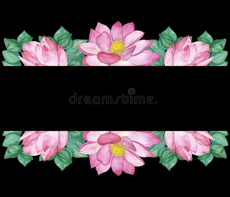 Watercolor hand painted nature floral banner composition with pink blossom lotus flowers and green eucalyptus leaves. On the black background for invitations royalty free illustration
