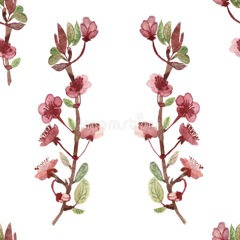 Watercolor hand painted nature floral seamless pattern with apple blossom pink flowers on the branches with green leaves vector illustration