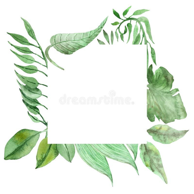 Watercolor hand painted nature jungle border squared frame with green tropical leaves and eucalyptus branches. Isolated on the white background for invitations stock illustration