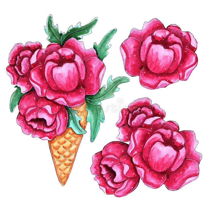 Watercolor hand painted pink peony flowers in ice cream royalty free illustration