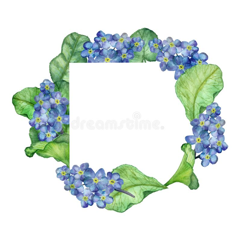 Watercolor hand painted square frame with blue forget-me-not flowers and large green leaves on branches for invitations. Watercolor hand painted square frame vector illustration