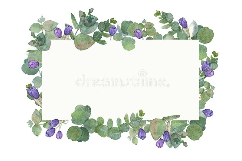 Watercolor hand painted square frame with silver dollar eucalyptus leaves and branches stock illustration