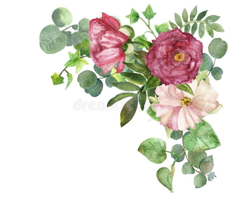 Watercolor hand painted summer bouquet frame with green eucalyptus leaves and pink pion flowers stock illustration