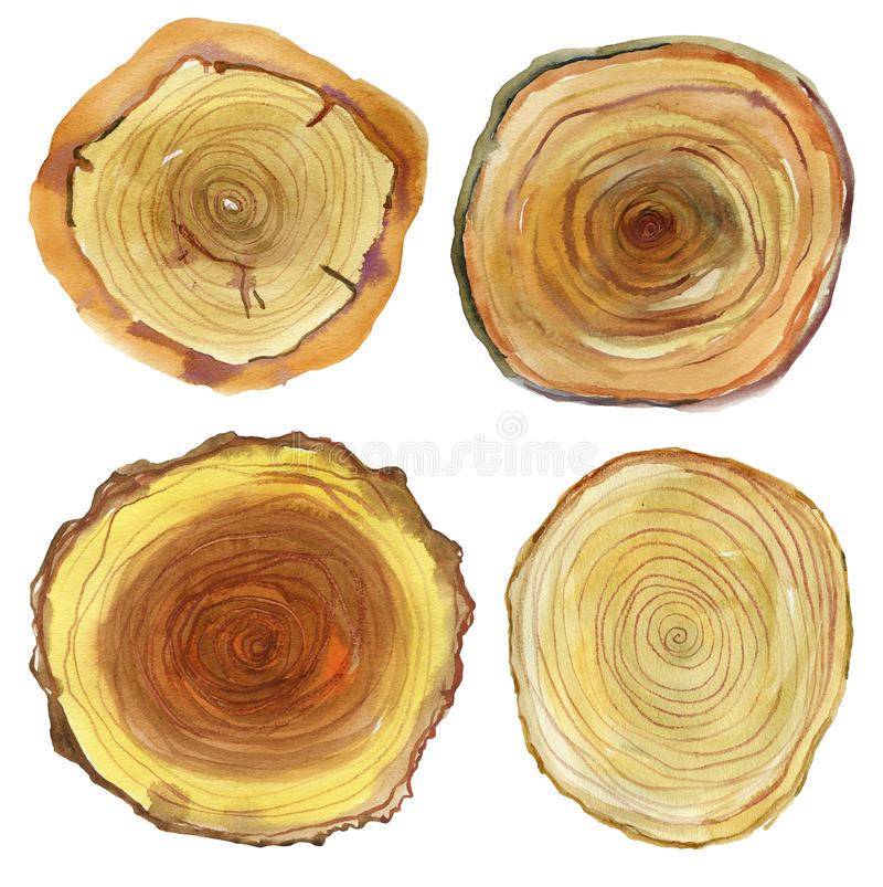 Watercolor hand painted wood slices and plank. stock illustration