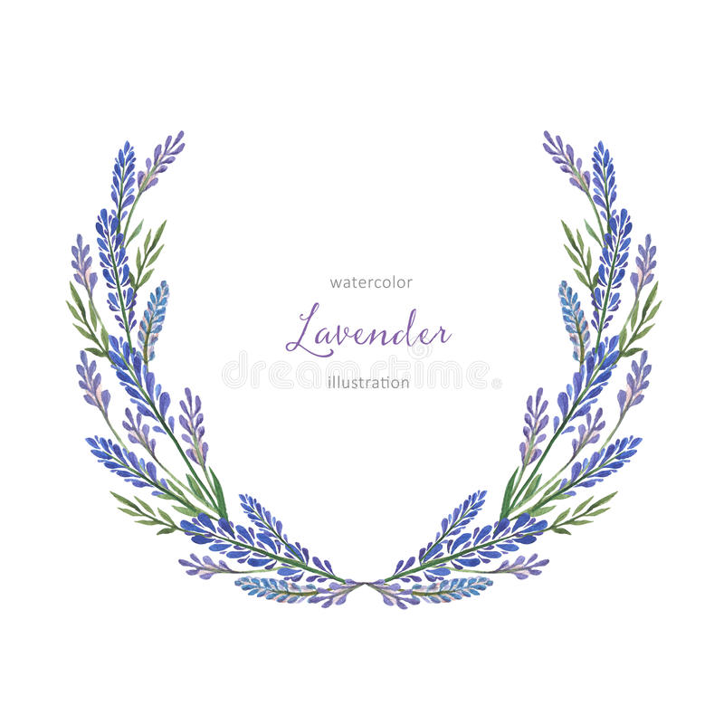 Watercolor hand painted wreath with lavender. Watercolor hand painted flower wreath with lavender. The perfect design for greeting card, packaging,beauty store vector illustration