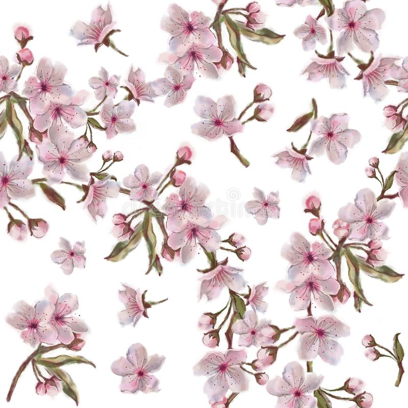 Watercolor hand painted cherry flowers wreath pattern. Botanical illustration in vintage style. vector illustration