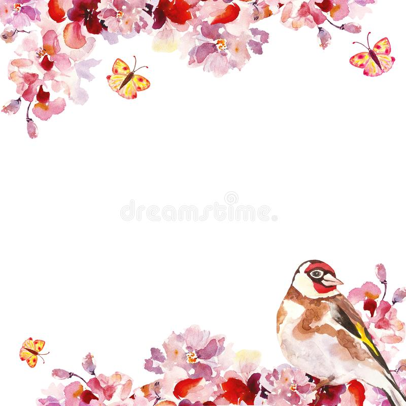 Watercolor hand pink sakura tree branches with bird on white background. Spring floral botanical frame vector illustration