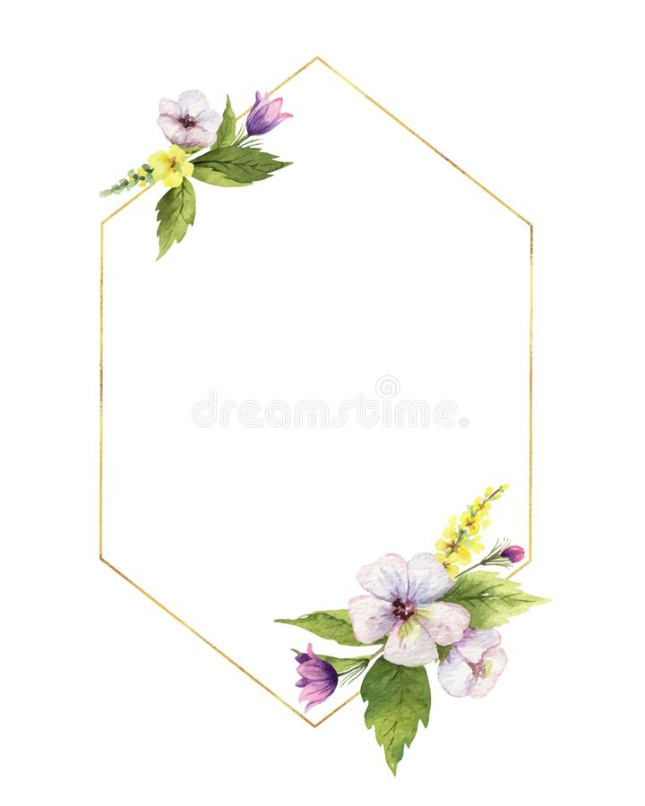Watercolor hand vector painted frame with field flowers. vector illustration