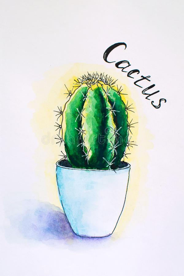 Watercolor handpainted cactus in pot. Watercolor sketch, illustration. stock photography
