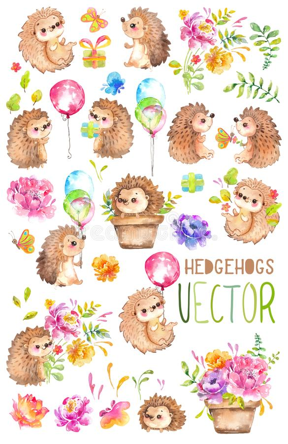 Watercolor Hedgehogs. Babies. Watercolor little animal clipart. Watercolor Hedgehogs, hand painted great illustration of cute Babies, Watercolor little animal stock illustration