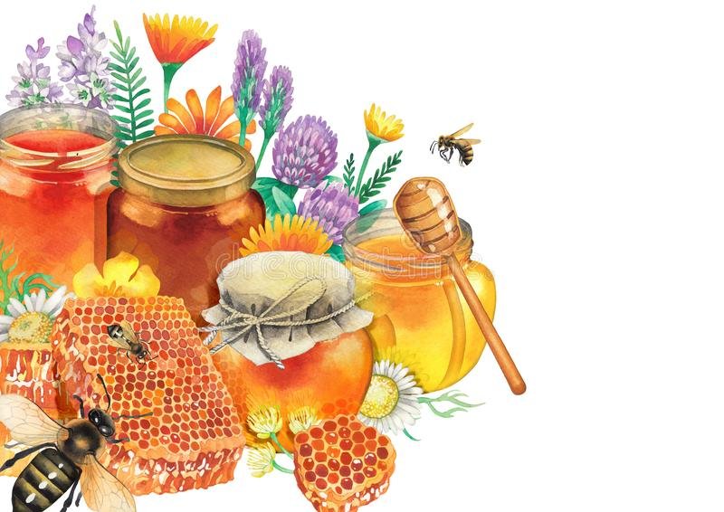 Watercolor honey bottles surrounded by honeycombs, meadow flowers and bees. Watercolor bottles with different varieties of honey surrounded by honeycombs, meadow royalty free illustration