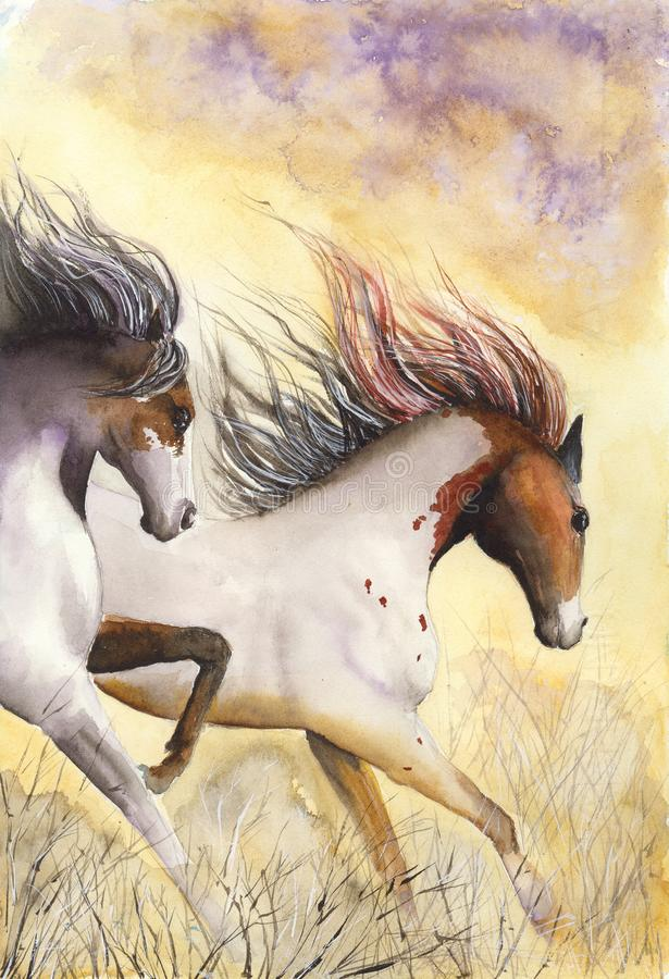 Watercolor horses in the desert royalty free illustration