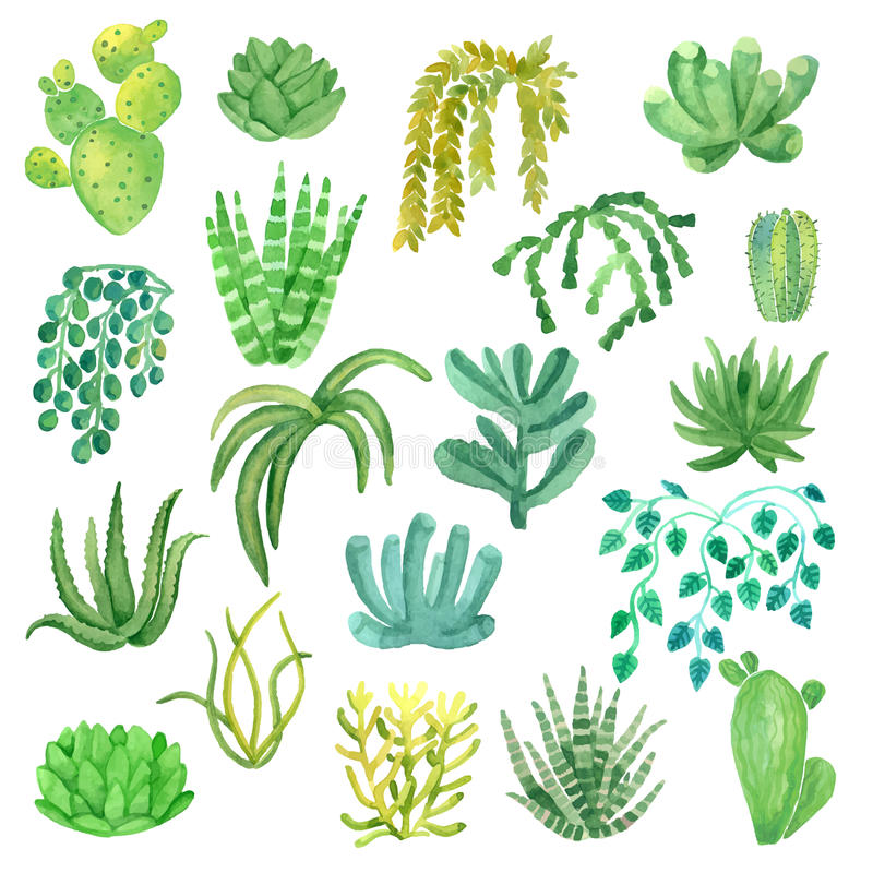 Watercolor houseplants in pots set vector illustration