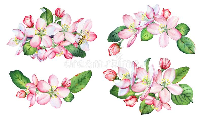 Apple Tree Clip Art Flowers