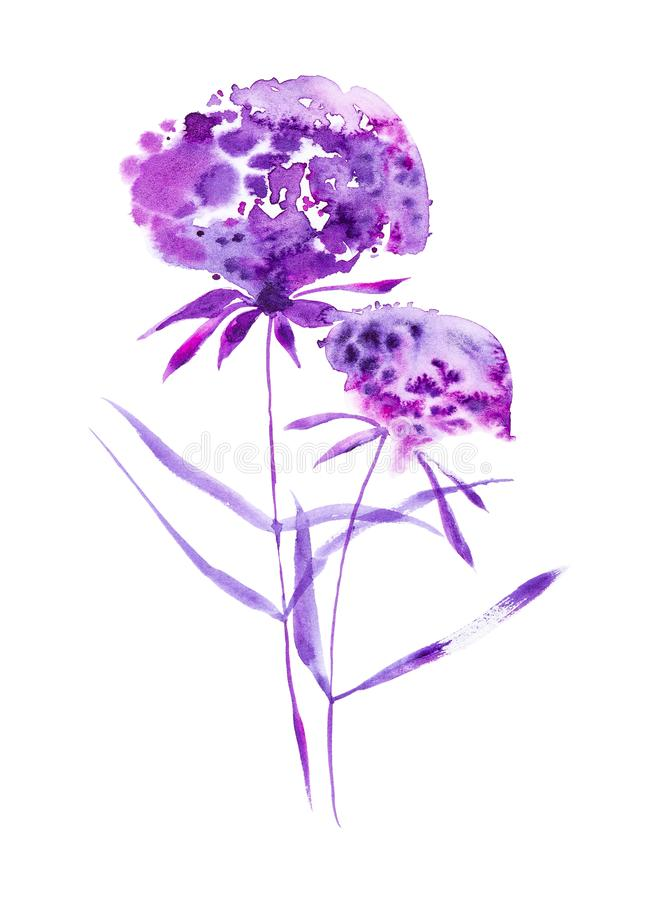 Watercolor illustration with beautiful abstract purple flowers. Isolated on white background royalty free stock photos