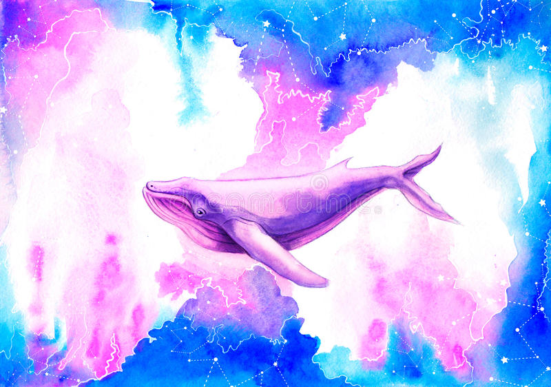 Watercolor Illustration big purple Whale. The watercolor Illustration big purple Whale stock illustration