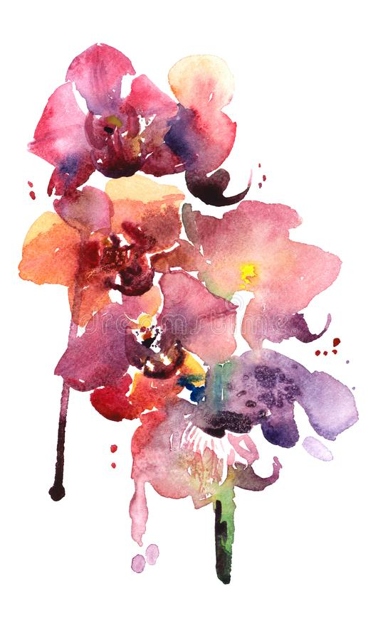Watercolor illustration of bright orchid flowers. stock photo