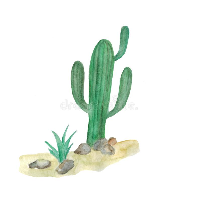 Watercolor illustration of cacti in the desert royalty free illustration