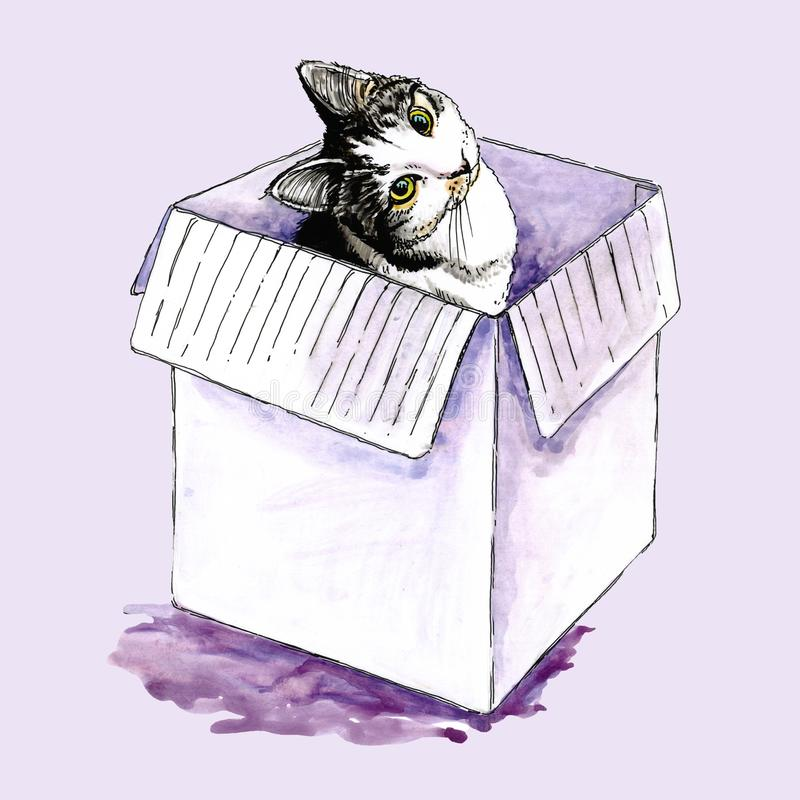 Watercolor illustration of a cat in a box. royalty free illustration