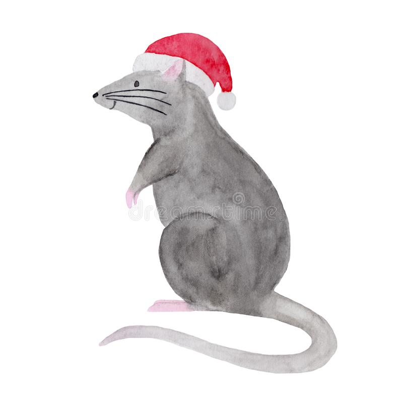 Watercolor illustration of Christmas rat in a red hat vector illustration