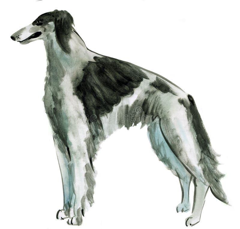 Watercolor illustration of dog Russian borzoi in white background. Handwork watercolor illustration of dog Russian borzoi in white background stock illustration