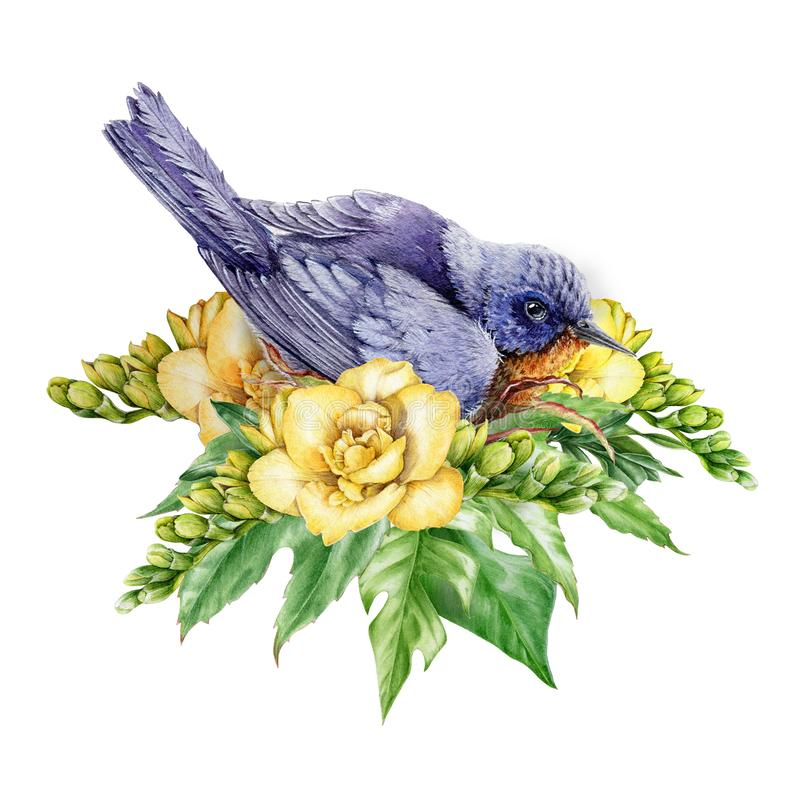 Watercolor illustration of an eastern bluebird in flowers. Beautiful blue bird sitting in yellow freesia flowers and green leaves. stock illustration