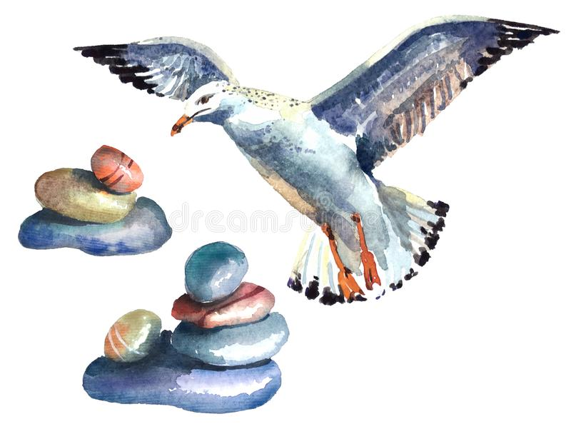 Watercolor illustration of elements in nautical style with a bird. royalty free stock images