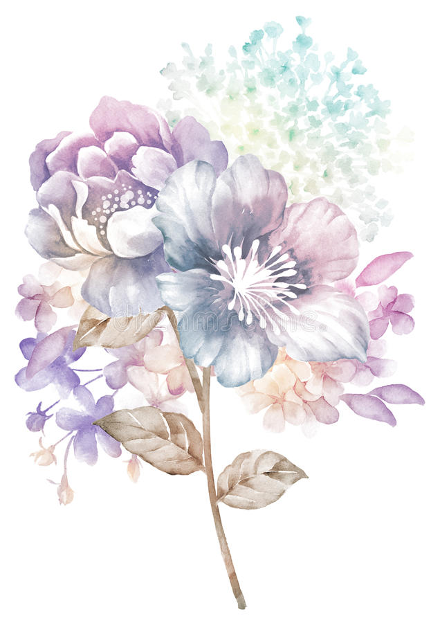 Watercolor illustration flower in simple background stock illustration