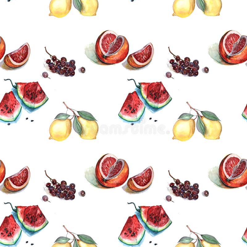 Watercolor illustration of fruit pattern vector illustration