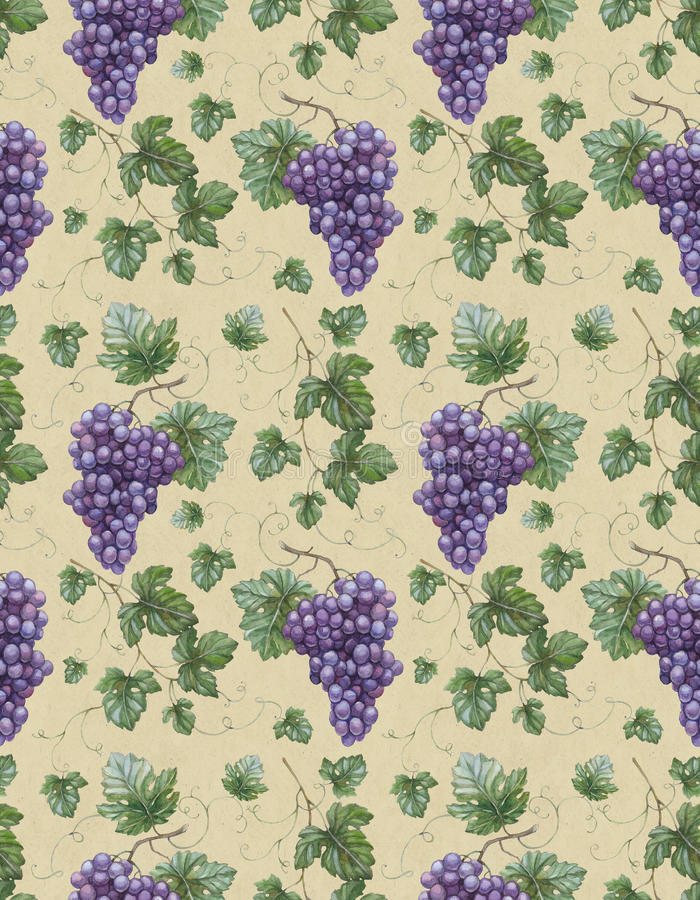 Watercolor illustration of grapes with lea stock illustration