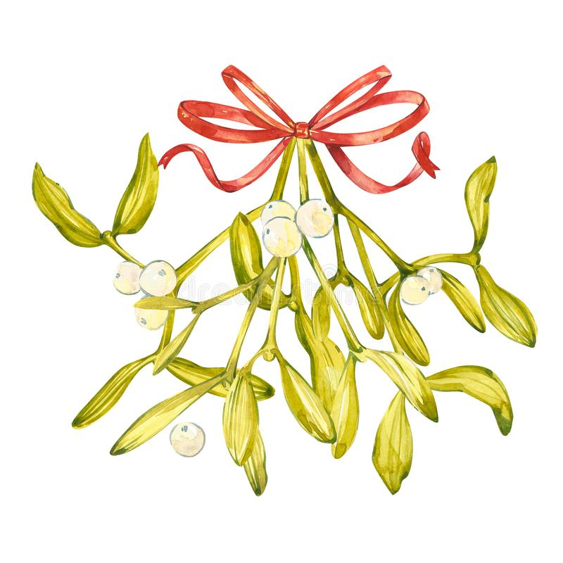 Watercolor illustration of green mistletoe. The Symbol of a Kiss. Christmas set isolated on white background. Hand royalty free illustration