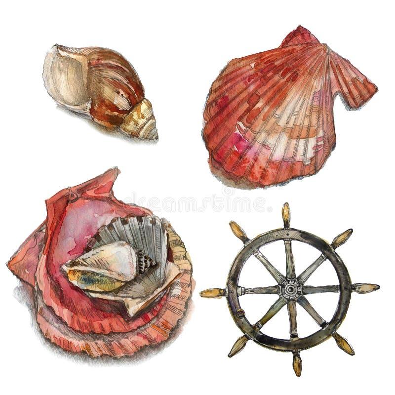 Watercolor illustration. Nautical elements royalty free stock photos