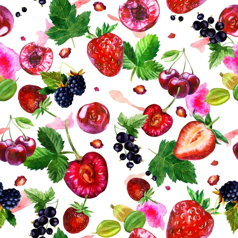 Watercolor illustration, pattern. Berries on white background. Cherries, strawberries, currants, blackberries, gooseberries, pink royalty free illustration