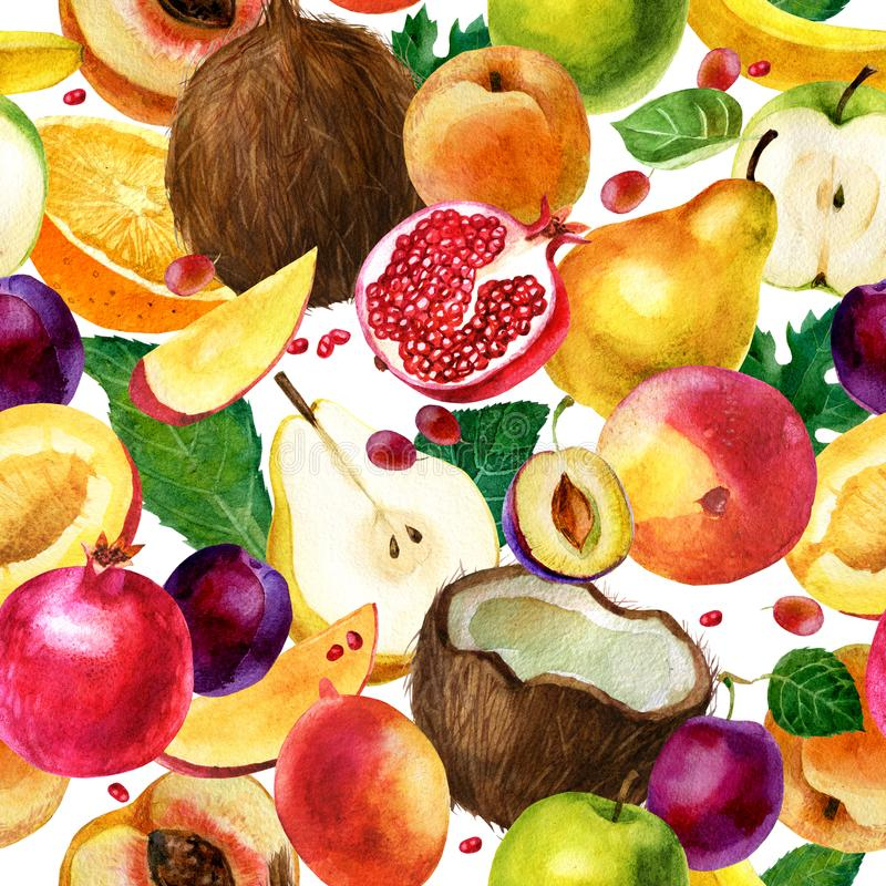 Watercolor illustration. Pattern of watercolor fruit on a white background. Coconut, pomegranate, pear, apple, mango, peach, plum, royalty free illustration