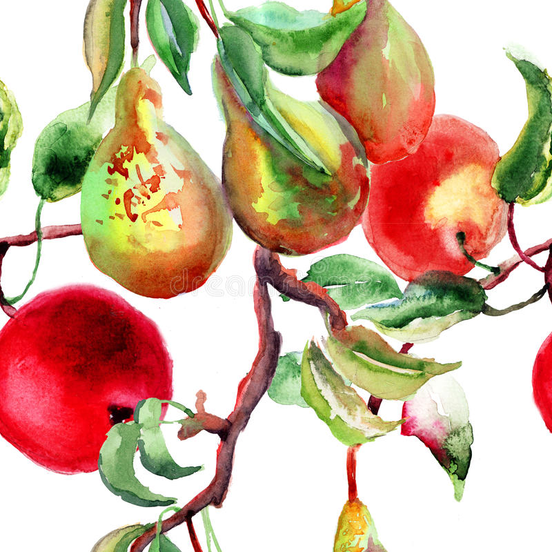 Watercolor Illustration of pears and apple vector illustration