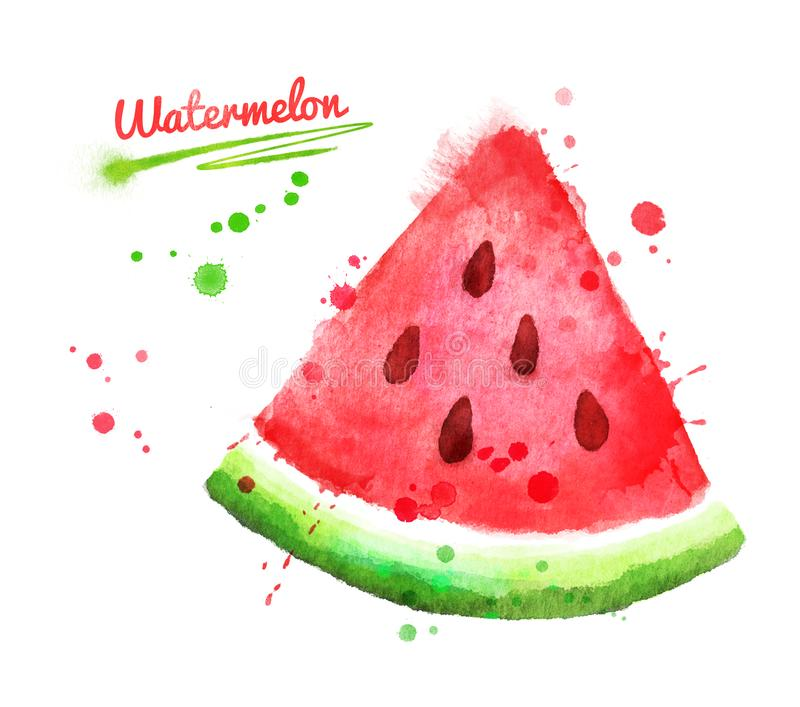 Watercolor illustration of watermelon royalty free illustration