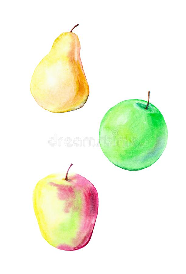 Watercolor illustration of red Apple, green Apple and pear . Pattern isolated on white background royalty free illustration