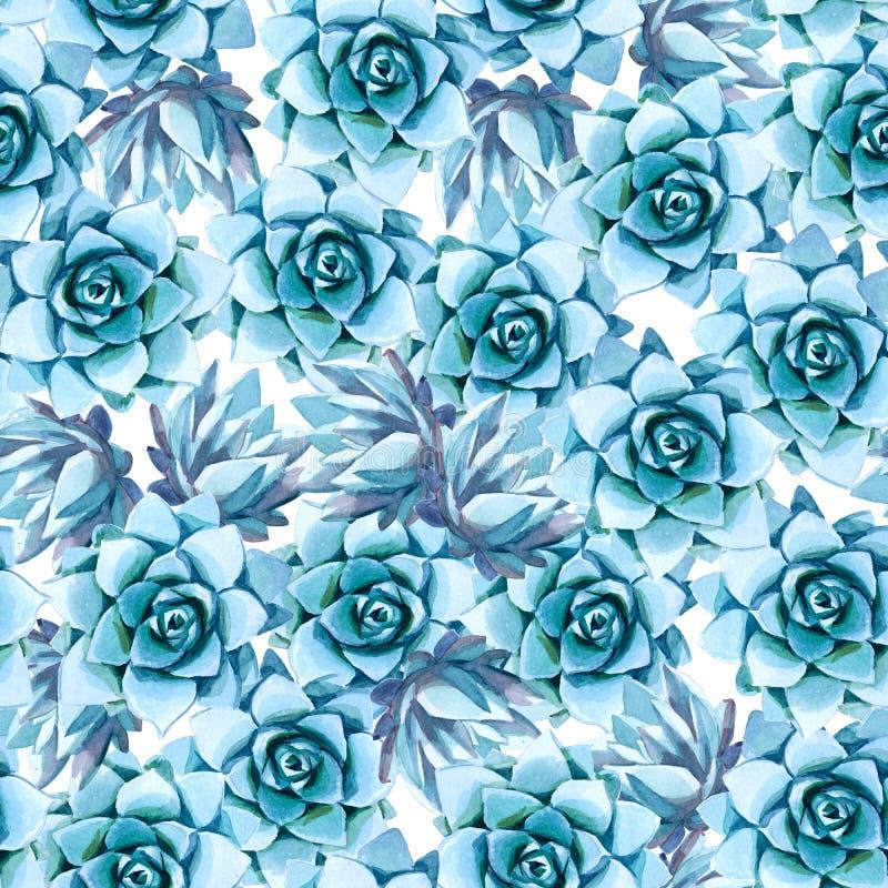 Watercolor illustration. Seamless pattern of blue succulent stock illustration