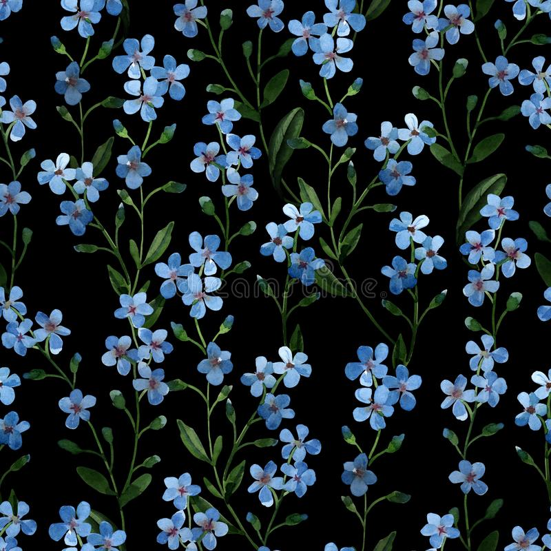 Watercolor illustration. Seamless pattern of gentle blue flowers with green leaves on dark royalty free illustration