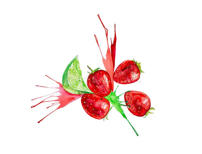 Watercolor illustration of strawberry and lime in juice splash isolated on a white background royalty free illustration