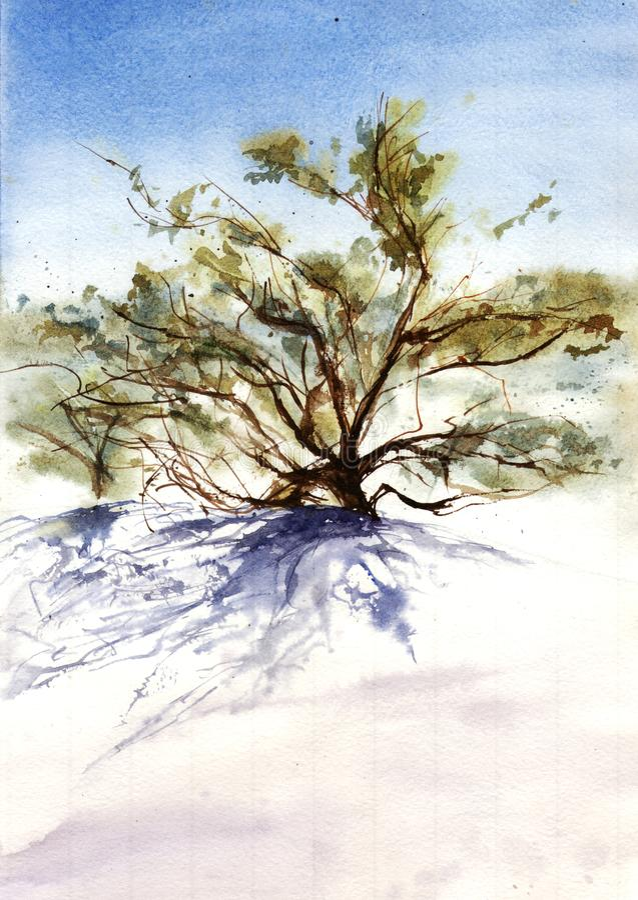 Watercolor illustration of tree in desert vector illustration