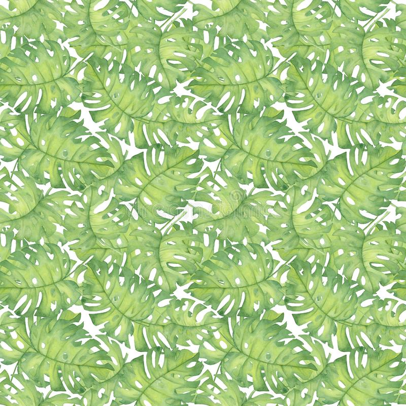 Watercolor illustration of tropical pattern,. Hibiscus leaves monstera Pattern. Drawing for printing, Hawaiian style stock images