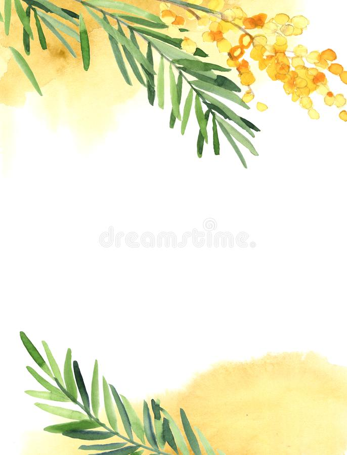 Vertical background of yellow mimosa flower for wedding card vector illustration